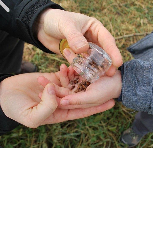 initier facilement ses enfants à l'écologie